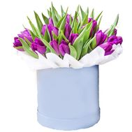 """31 purple tulip in a box"" in the online flower shop flora.od.ua"