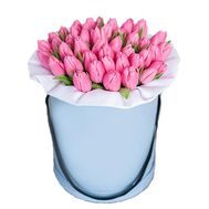 31 pink tulips in a box - flowers and bouquets on flora.od.ua