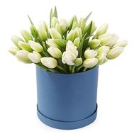 45 white tulips in a box - flowers and bouquets on flora.od.ua