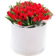 """45 red tulips in a box"" in the online flower shop flora.od.ua"