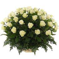 51 белая роза - цветы и букеты на flora.od.ua