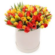 51 differently tulip in a box - flowers and bouquets on flora.od.ua