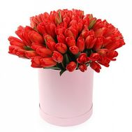 51 tulips in a box - flowers and bouquets on flora.od.ua