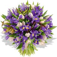 51 tulips and iris - flowers and bouquets on flora.od.ua