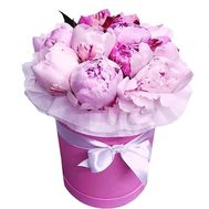 """9 pink peonies in a box"" in the online flower shop flora.od.ua"