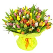 Bouquet of 101 different colored tulips - flowers and bouquets on flora.od.ua