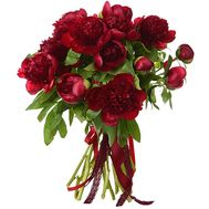 """Bouquet of 17 claret pions"" in the online flower shop flora.od.ua"
