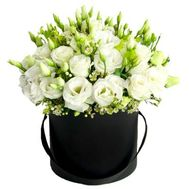 A bouquet of 25 eustoms in a box - flowers and bouquets on flora.od.ua
