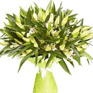 Bouquet of 35 lilies - flowers and bouquets on flora.od.ua