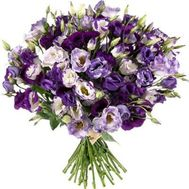 Bouquet of 51 purple eustoms - flowers and bouquets on flora.od.ua
