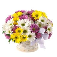 Basket of flowers from chrysanthemums - flowers and bouquets on flora.od.ua