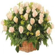 Basket of 51 Cream roses - flowers and bouquets on flora.od.ua