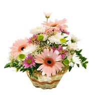 Basket with gerberas and chrysanthemums - flowers and bouquets on flora.od.ua