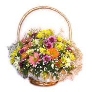 Корзина из хризантем - цветы и букеты на flora.od.ua