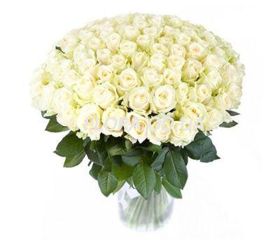 """""""101 белая роза 70 см"""" в интернет-магазине цветов flora.od.ua"""