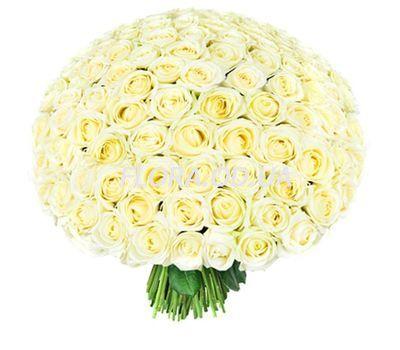 """201 white roses 60 cm"" in the online flower shop flora.od.ua"
