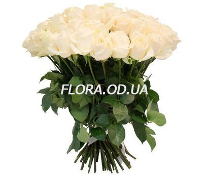 """51 white roses 60 cm"" in the online flower shop flora.od.ua"