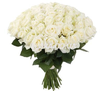 """55 white roses"" in the online flower shop flora.od.ua"