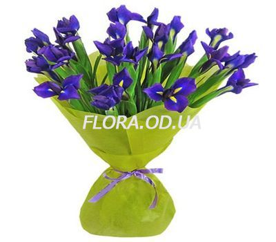 """Bouquet 21 blue irises"" in the online flower shop flora.od.ua"