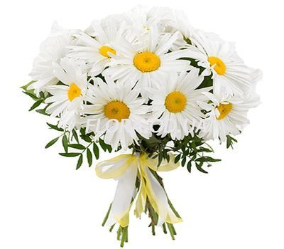 """Bouquet of 19 chamomiles"" in the online flower shop flora.od.ua"