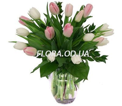 """Bouquet of 19 Tulips"" in the online flower shop flora.od.ua"