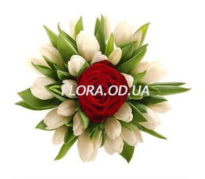 """""""Bouquet of 20 Tulips with a roses"""" in the online flower shop flora.od.ua"""