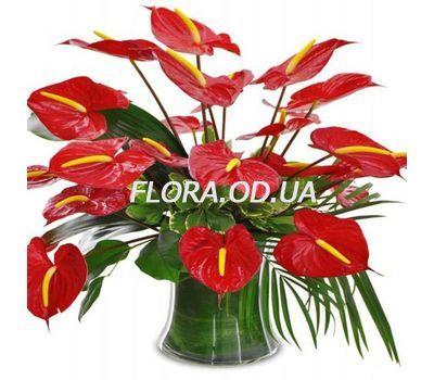 """Bouquet of 21 Anturium"" in the online flower shop flora.od.ua"