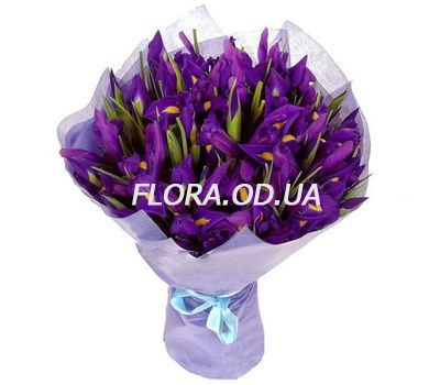 """Bouquet of 25 irises"" in the online flower shop flora.od.ua"