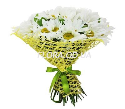 """Bouquet of 25 chamomiles"" in the online flower shop flora.od.ua"