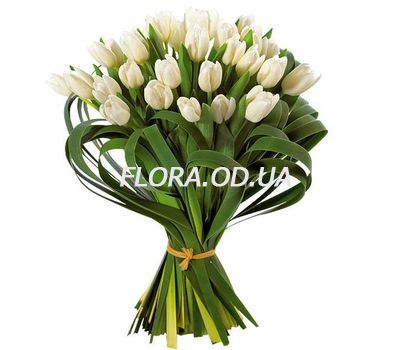 """Bouquet of 29 white tulips"" in the online flower shop flora.od.ua"