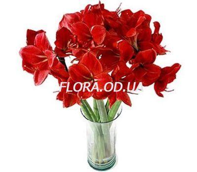 """""""Букет из 7 амариллисов"""" в интернет-магазине цветов flora.od.ua"""