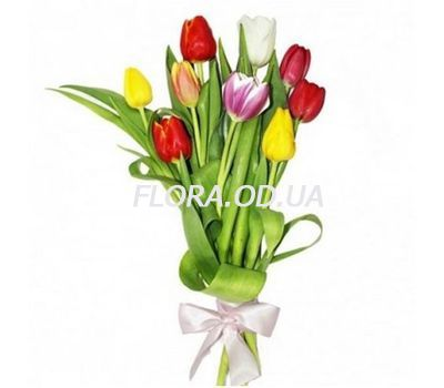 """Bouquet of 9 Tulips"" in the online flower shop flora.od.ua"