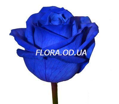 """""""Blue roses"""" in the online flower shop flora.od.ua"""