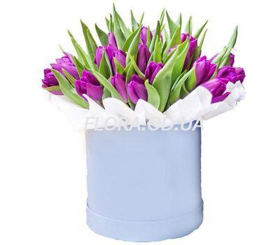 """""""31 фиолетовый тюльпан в коробке"""" в интернет-магазине цветов flora.od.ua"""