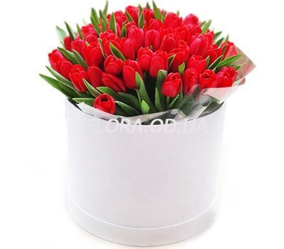 """""""45 red tulips in a box"""" in the online flower shop flora.od.ua"""